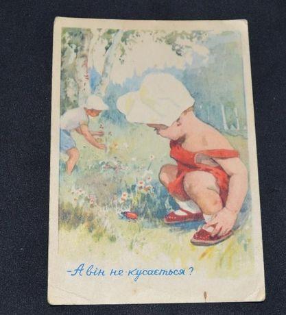 """старинная почтовая открытка """" а он не кусается?"""" 1957 год винтаж"""
