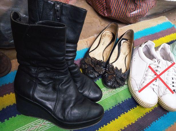 Обувь Кожа Бесплатно