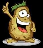 Ziemniaki Denar Gala 6zł