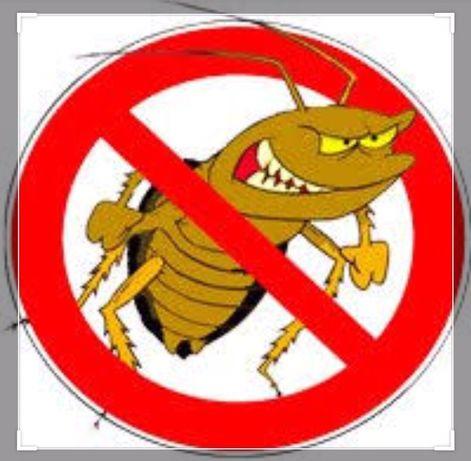 Уничтожение тараканов, клопов, блох