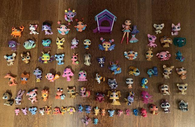 80 figurek littles pet shop