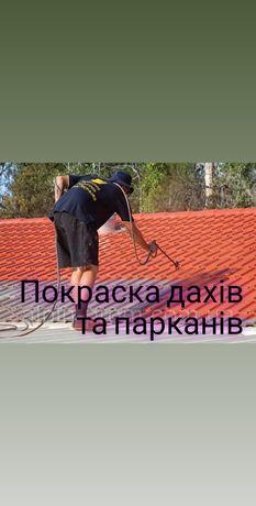 Покраска дахів та парканів