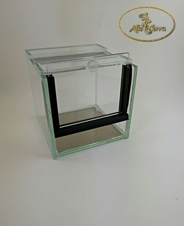 Terrarium szklane 10x10x10 cm AlleTerra