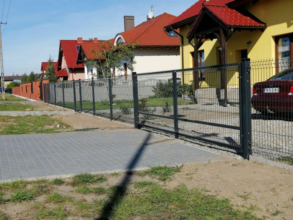 Kompletne Ogrodzenia z paneli i siatki ogrodzeniowej Czempiń - image 1