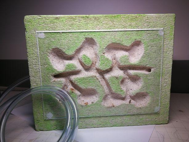 Gniazdo betonowe24/19,5cm (Formikarium)