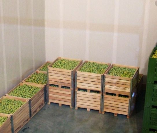 Камера холодильна яблук, груш, абрикосів, установка холод Хмельницький