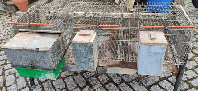 Coelheira /Jaula criação de coelhos