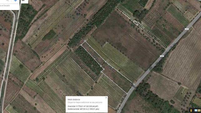 terreno rustico vinha caduca nacional 335