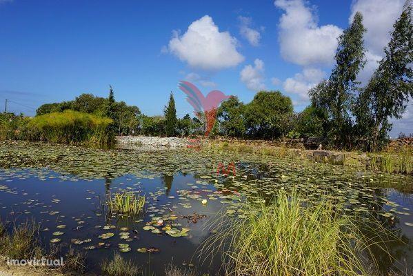 Quinta localizada na Costa Vicentina, próximo da Praia