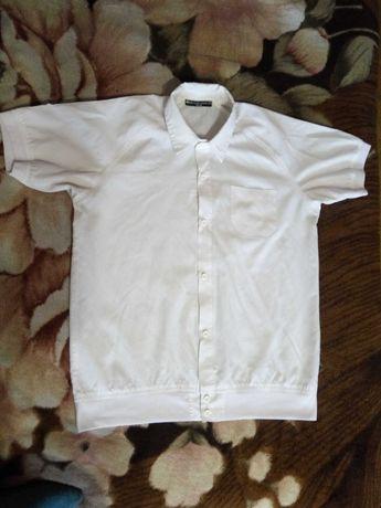 Белая рубашка тенниска BlueLand короткий рукав на манжете 135-150см