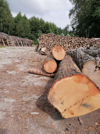 Drewno Kłoda Dąb Czerwony Tartaczny