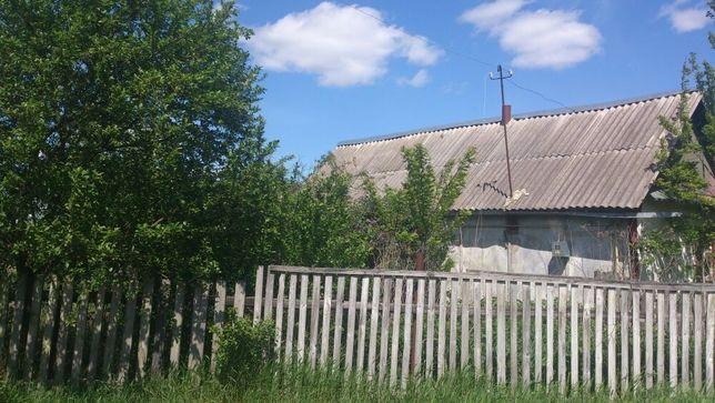 Продаю дом с земельным участком в Киевской обл., с.Грузское