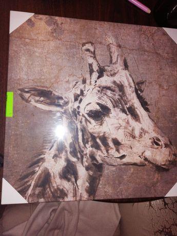 Obraz żyrafa drukowany na plutnie 40x40cm