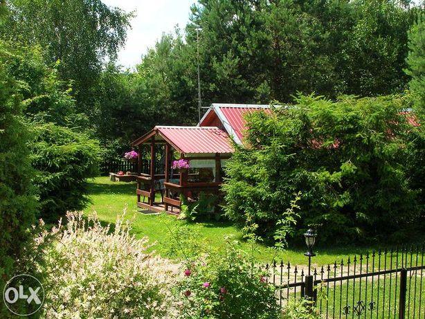Domek na Polance na Kaszubach- ustronne miejscie