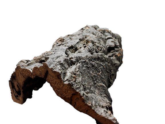 Kora Dębu Korkowego Jaskinia M 20x10x20 cm TERRARIUM Kurier Wysyłka