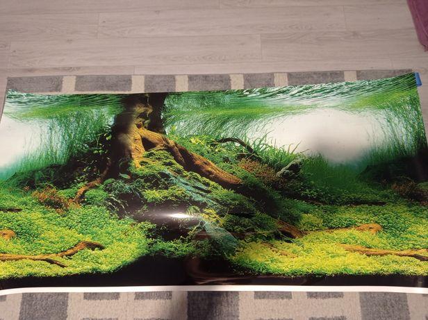 Akwarium fototapeta tło 100x50