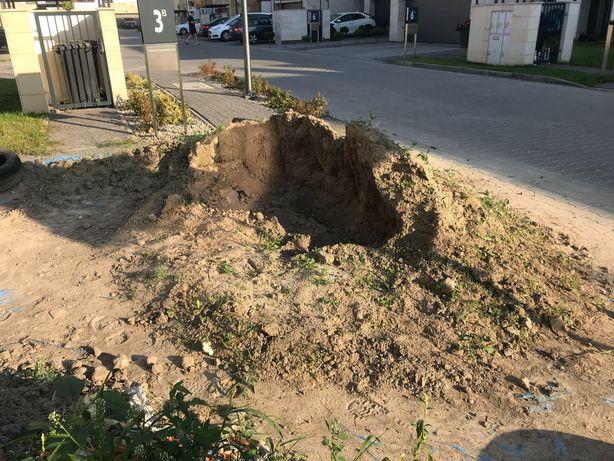 oddam ziemie ogrodową pod trawnik Ożarów Mazowiecki