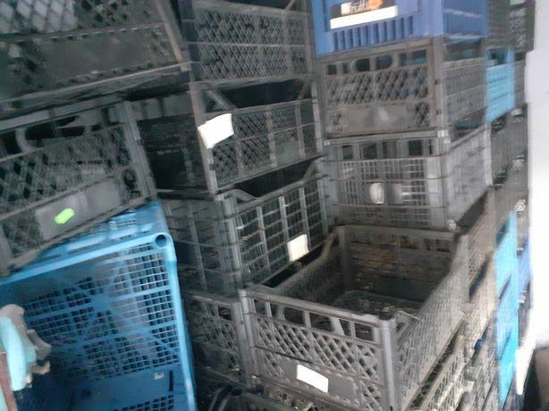 Продам ящики пластмассовые