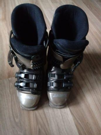 buty narciarskie dolomite