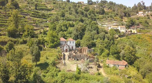 Quinta com 7 hectares, 1 hora do porto 7 minutos do rio Douro