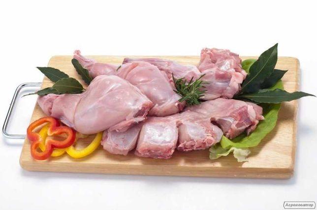 М'ясо  домашнього кролика