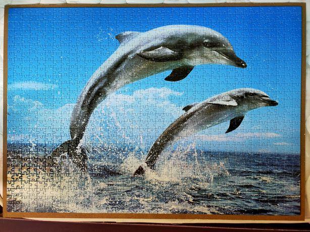 Puzzle Golfinhos 500 peças