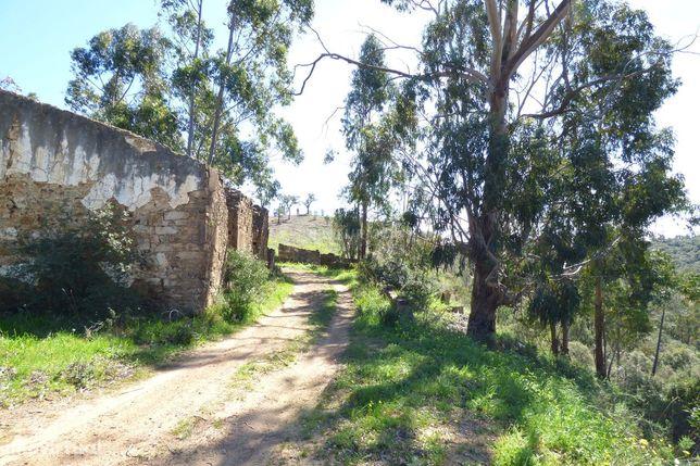Herdade no Algarve, excelente  para turismo rural, ou Habitação.  Tem