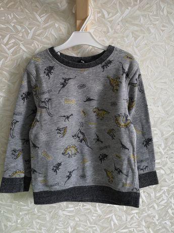 Bluza w Dinozaury George 98