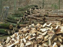 drewno opałowe kominkowe z transportem