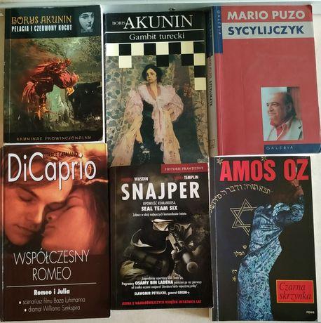 Beletreystyka po 3zł/szt Akunin,Sapkowski,Tolkien,Remarque