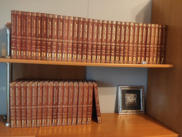 Praktyczny słownik współczesnej polszczyzny