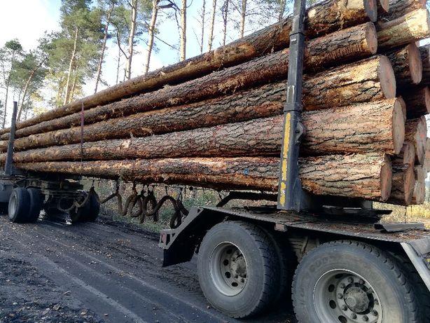 Drewno Sosna Tartaczna Świerk Jodła Modrzew transport