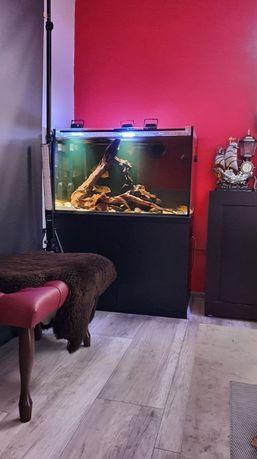 Akwarium 300L 8mm grube z szafką i uposażeniem