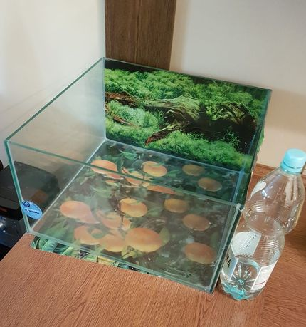 Akwarium terrarium dla żółwia +akcesoria