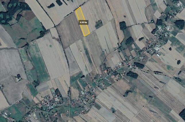 Sprzedam ziemię rolną, Siecieborzyce, Lubuskie 4,50ha