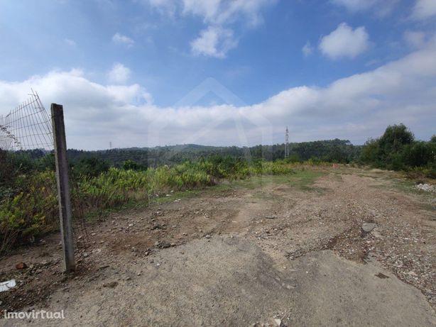 Terreno Rústico com 24 771m2 em Nogueira do Cravo