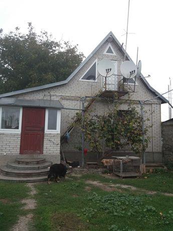 Дом  с Ольшаница ул. РОГОЗЯНСКАЯ 76 Рокитянского р-она Киевской
