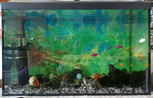 аквариум 140 литров