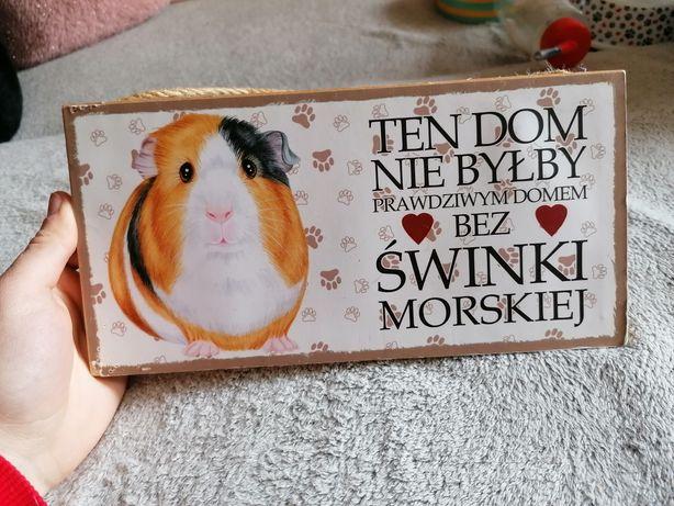 Tabliczka dla fanów świnek morskich