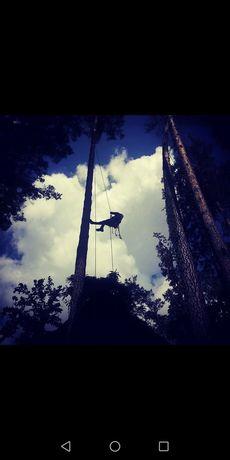 Спилить дерево удалить дерево кронирование обрезка удаление альпинист