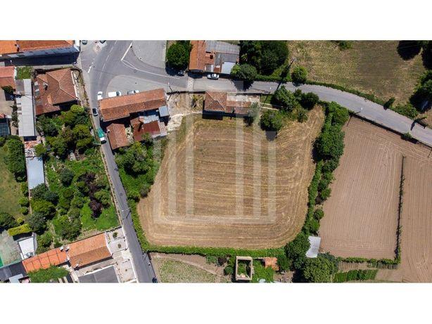 Casas Antigas e terrenos em Souto, S.M.Feira