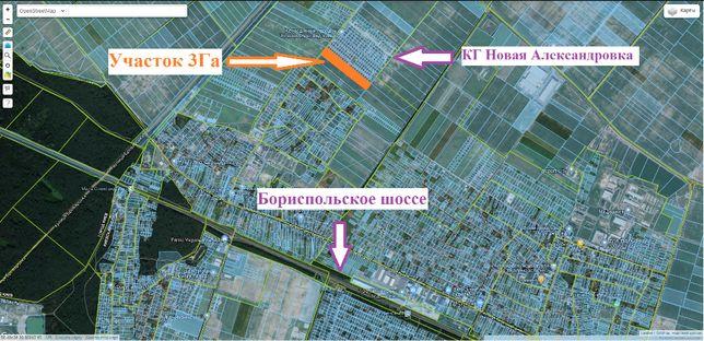 Продам участок 3 Га возле КГ Новая Александровка