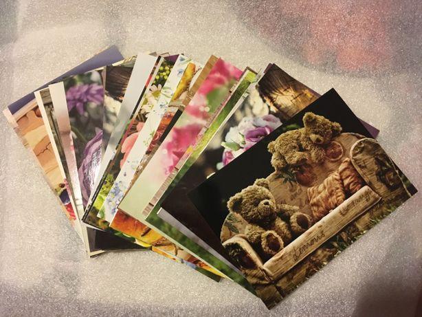 Kartki pocztowe kwiaty róże misie koty