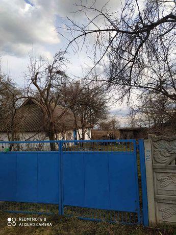 Дом с землей в Трилесах Фастовский район