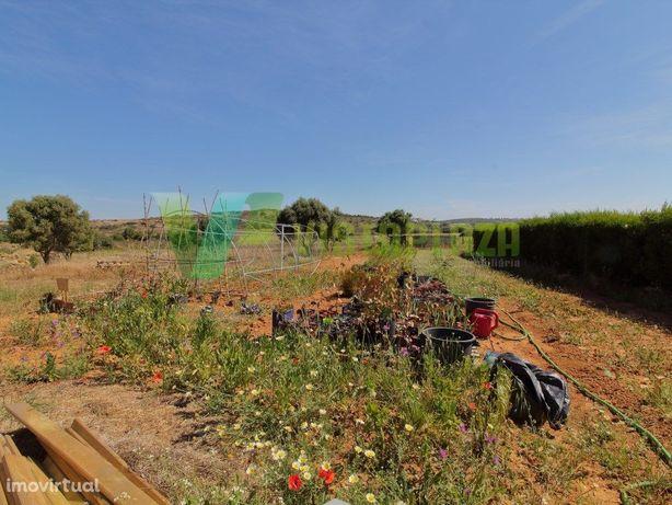 Terreno Rustico, Burgau, Projeto Agrícola financiado Apro...