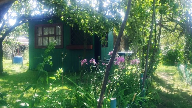 Działka ogrodowo-rekreacyjna ROD
