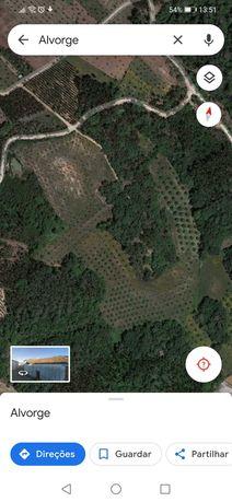 Vendo terreno com cerca de 10 hectares