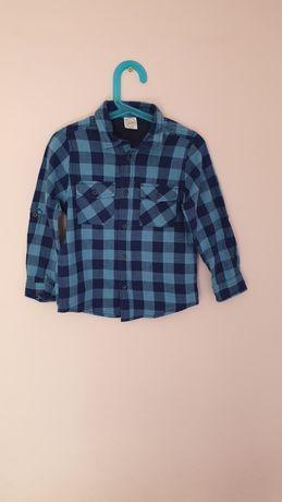 Koszula chłopięca Cool Club 116