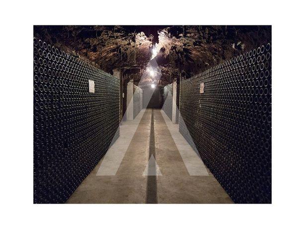 Caves fundadas em 1890 / Adega de armazenagem e comercial...