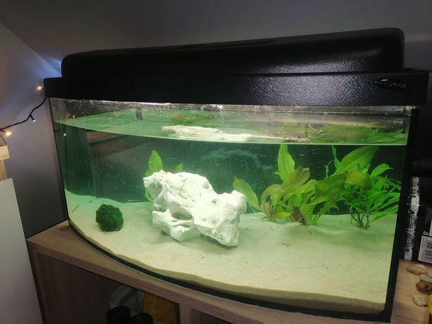 Używane akwarium 60l